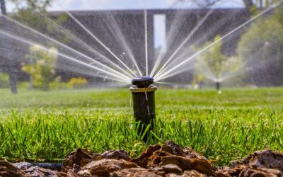 Signs Of Sprinkler System Problems